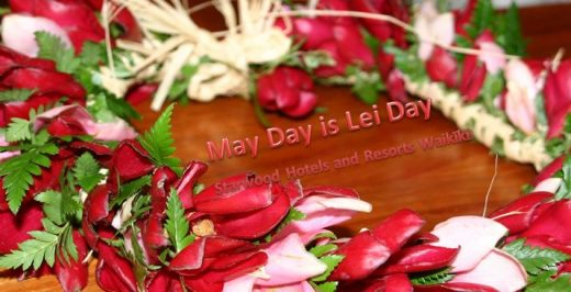 red and pink-petaled flowers lei on brown surface