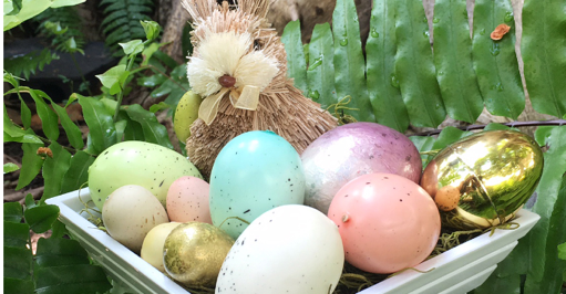 easter eggs and bunny on fern plant