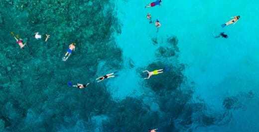 bird's-eye-view photo of people swimming on body of water