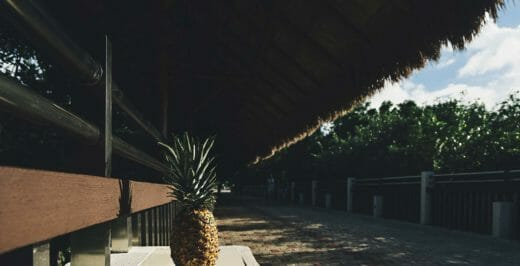 pineapple fruit on white bench at daytime